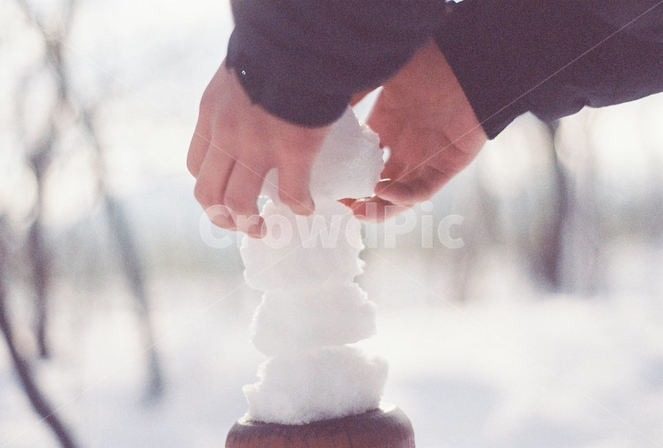 겨울, 눈, 눈뭉치, snow, 숲