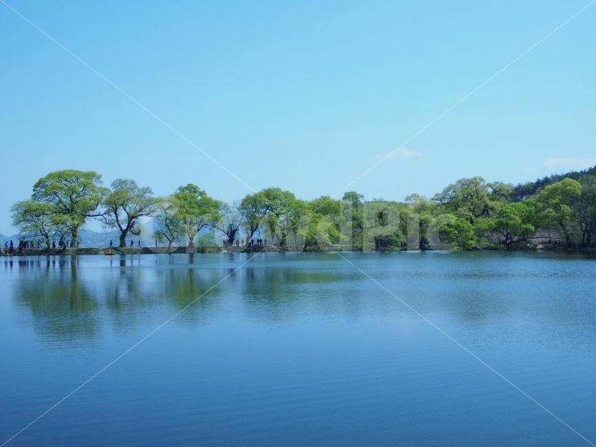 호수, 반곡지, 물그림자, 시원, 파랑