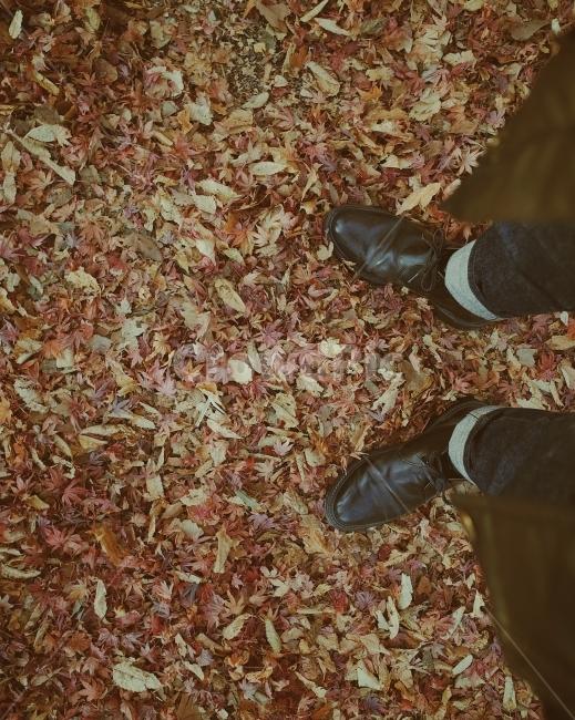 가을사진, 낙엽, 리코gr2, 낙엽밟기, 가을이미지