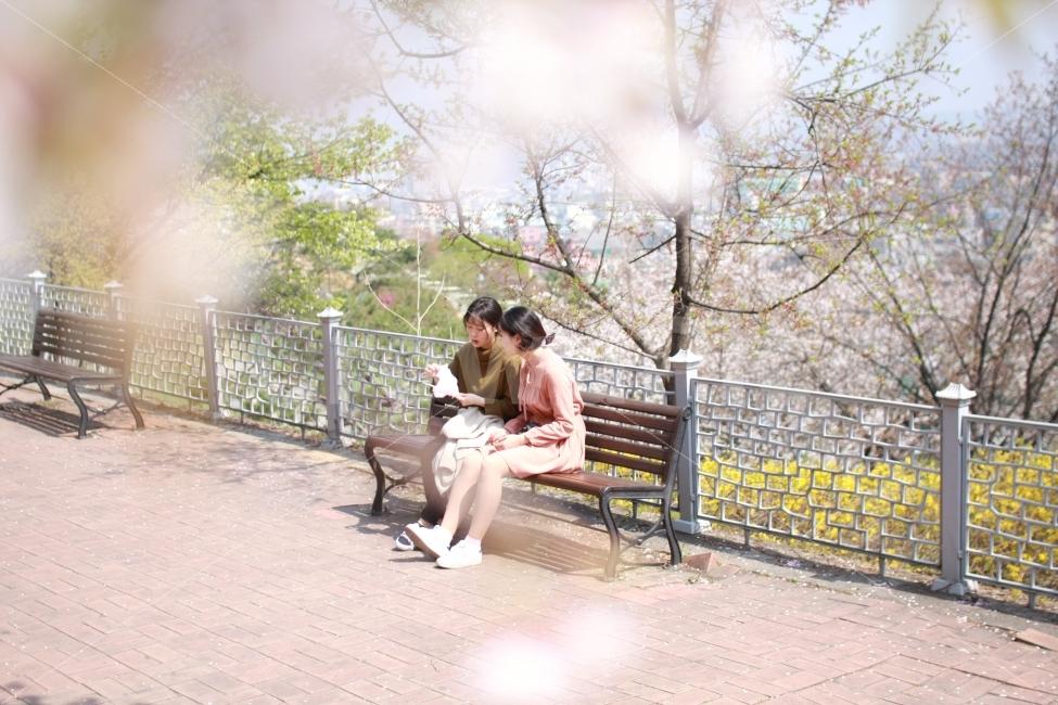 감성사진, 봄, 소풍, 힐링, 휴식