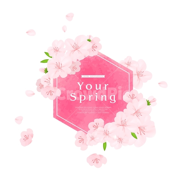 벚꽃, 꽃, 꽃잎, 봄, 팝업