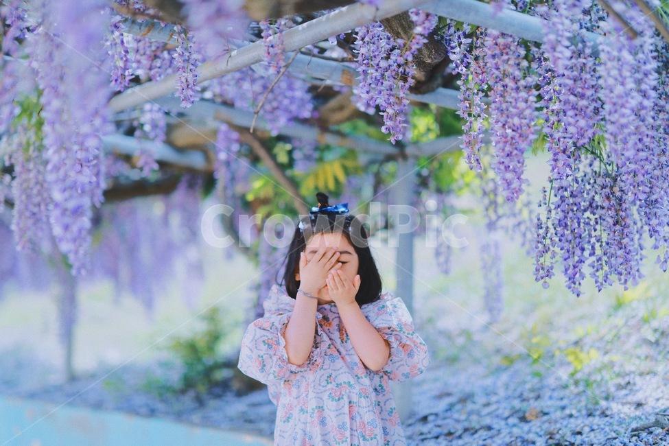 아기, 주니어, 키즈, 키즈모델, 꽃