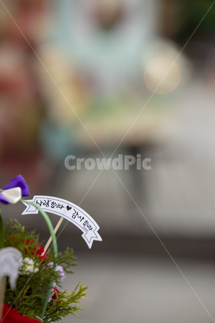 어버이날, 스승의날, 글귀, 꽃, 사랑합니다