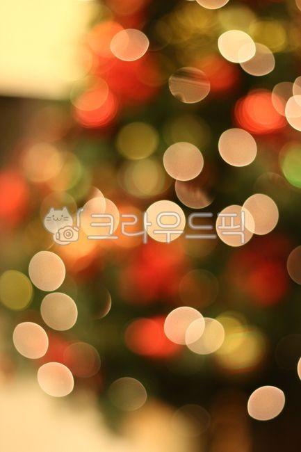 불빛, 아웃포커싱, 트리, 크리스마스, 성탄절
