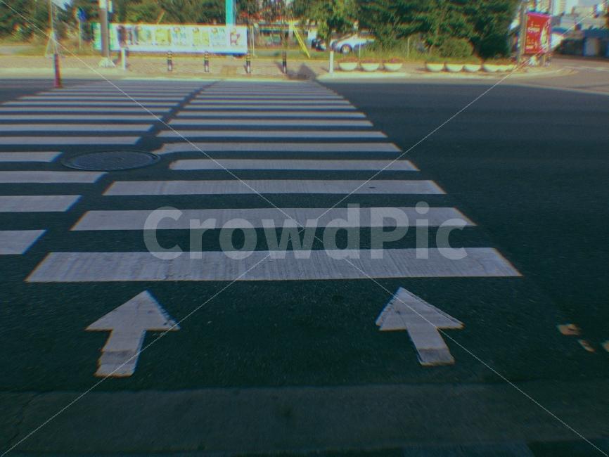 신호등, 길, 도로, 도시, 횡단보도