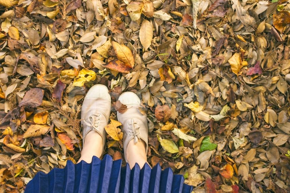 가을, 낙엽, 단풍, 자연, 소녀