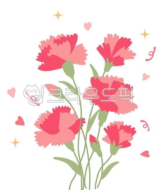 카네이션, 어버이날, 스승의날, 선물, 꽃