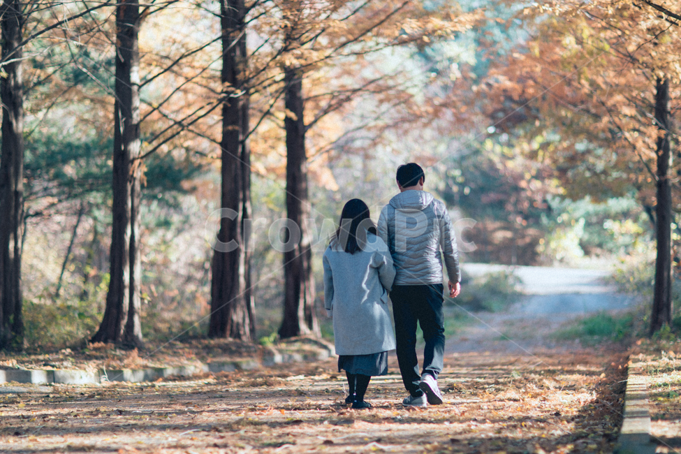 walking, 보행, person, 사람, human