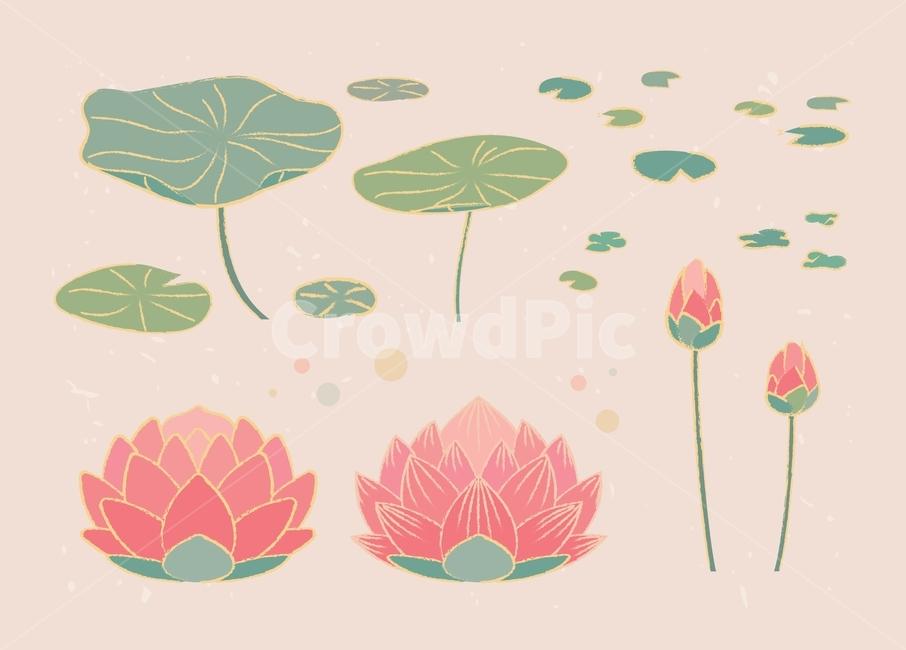 석가탄신일, 연꽃, 불교, 종교, 석가