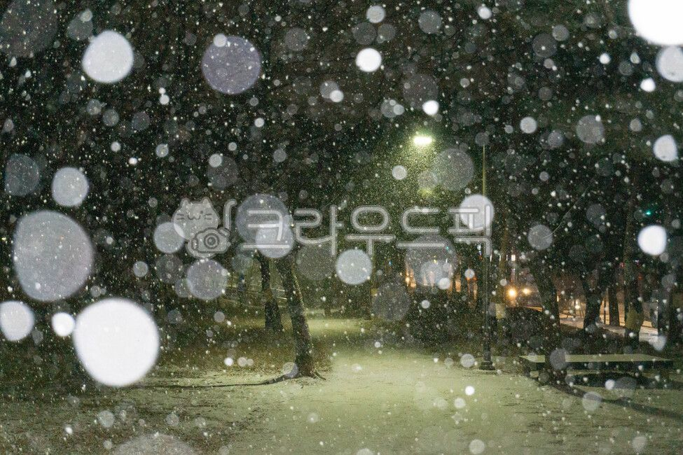 nature, winter, outdoors, storm, snow