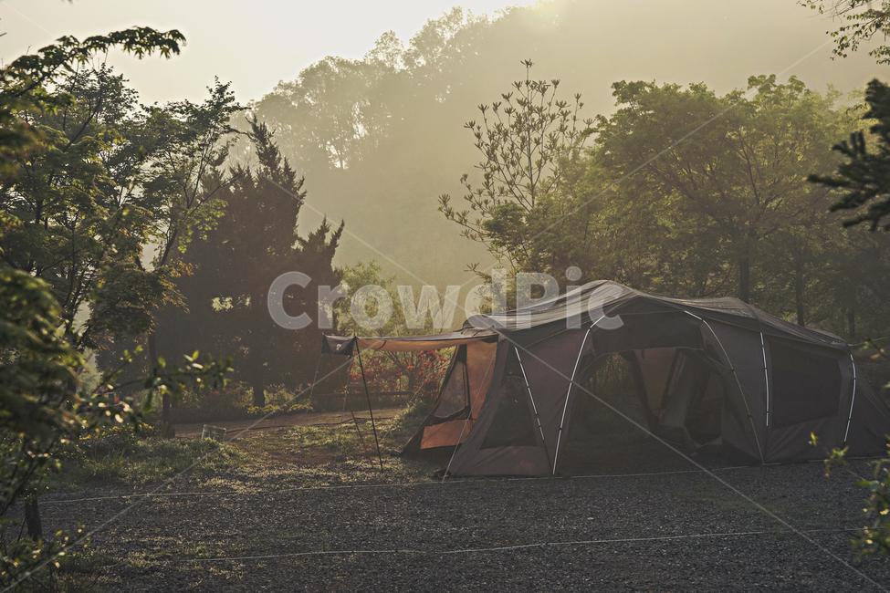 tent, 텐트, camping, 캠핑, 아침