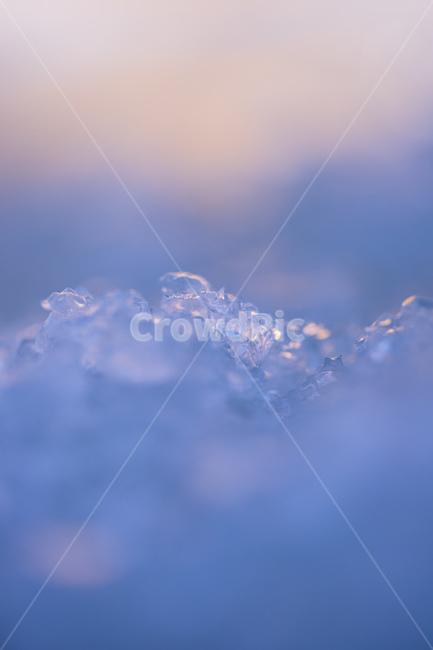 겨울, 환절기, 얼음, 감성, 사진
