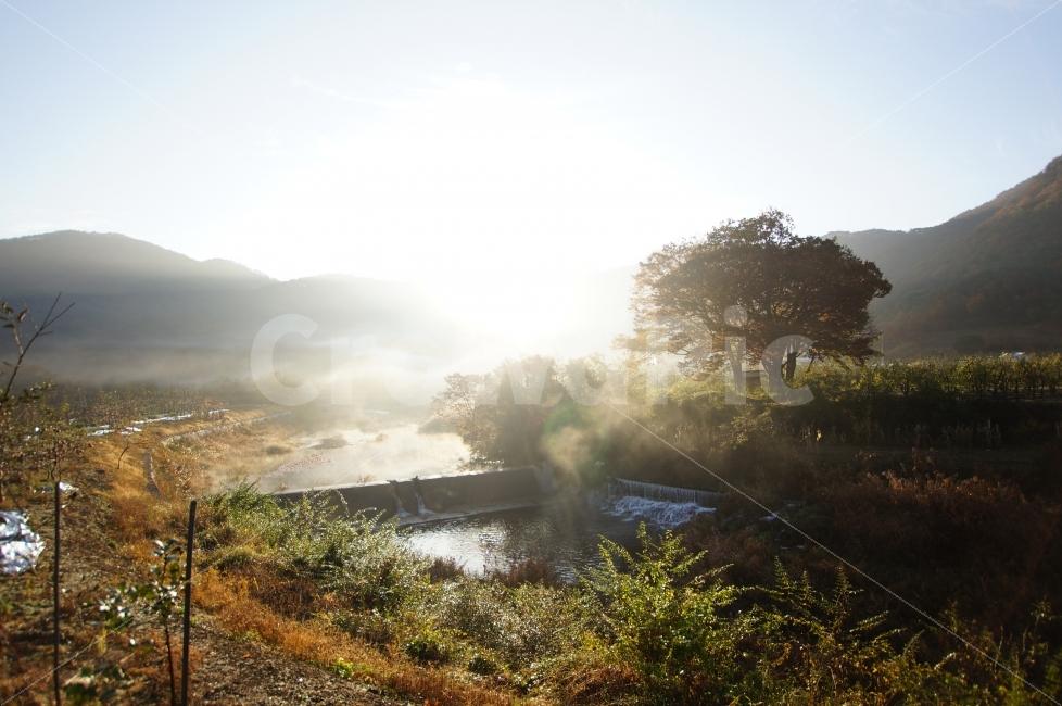 Image result for 아지랑이 봄날