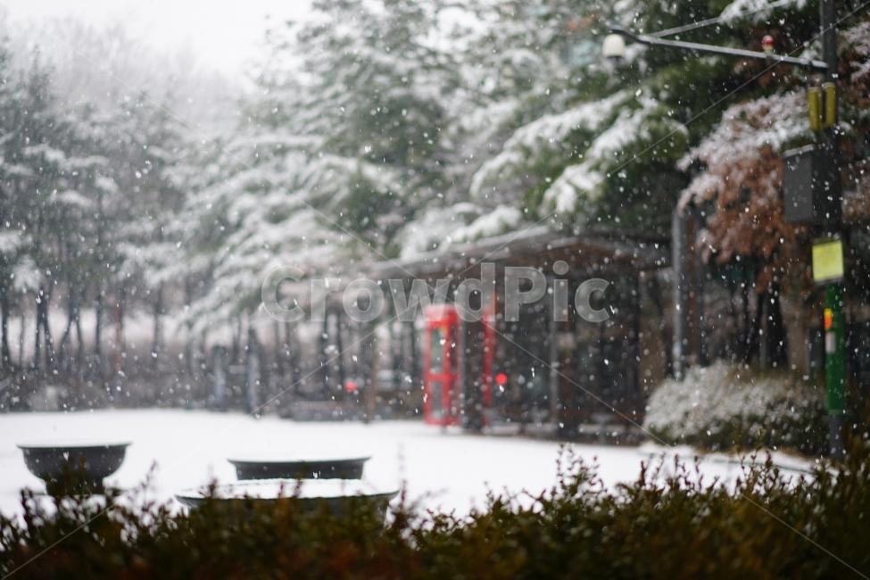 눈, 스노우, 풍경, 풍경사진, 겨울