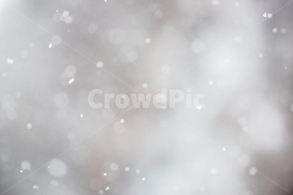 자연, 겨울, 눈, 하얀색, 눈송이