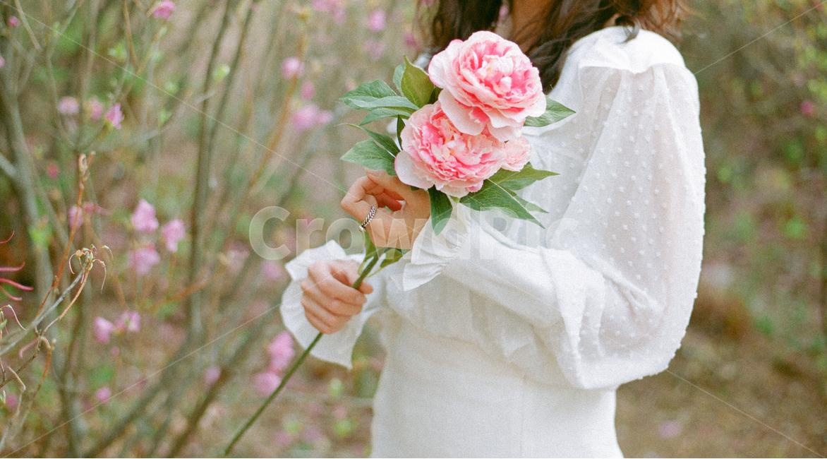 꽃, 분홍색, 봄, 인물사진, 진달래꽃