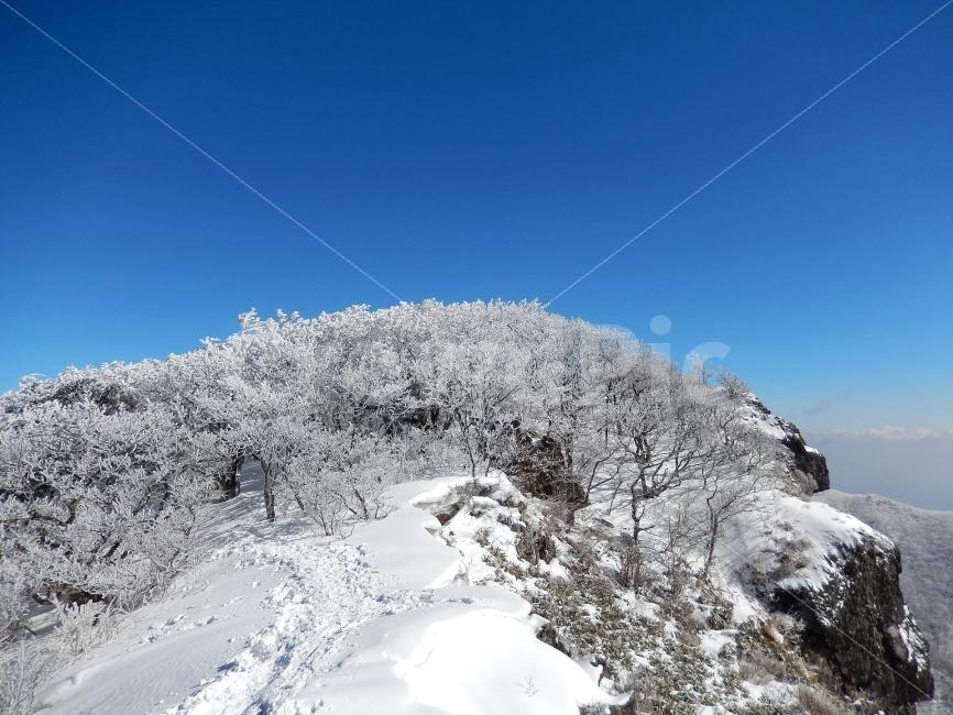 소백산, 눈꽃풍경, 상고대, 겨울풍경, 국립공원 사진, 이미지