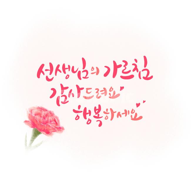 carnation, 카네이션, 스승의날, 가정의달, 은혜