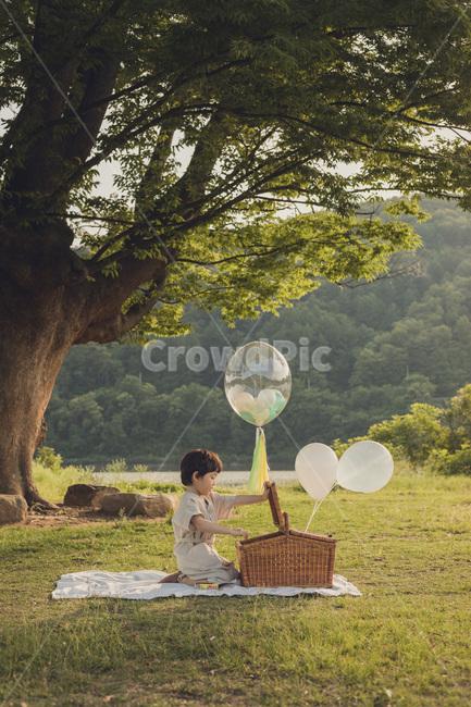 나무그늘, 아이옆모습, 소풍, 바구니, 행복