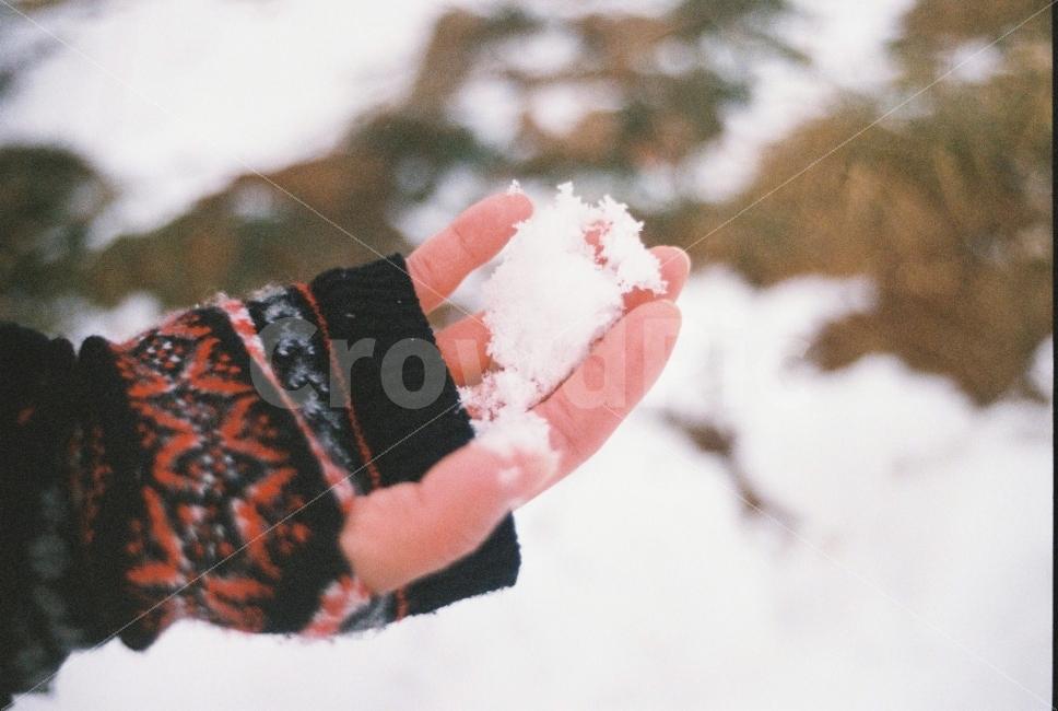 겨울, 눈, 감성, 장갑, 손