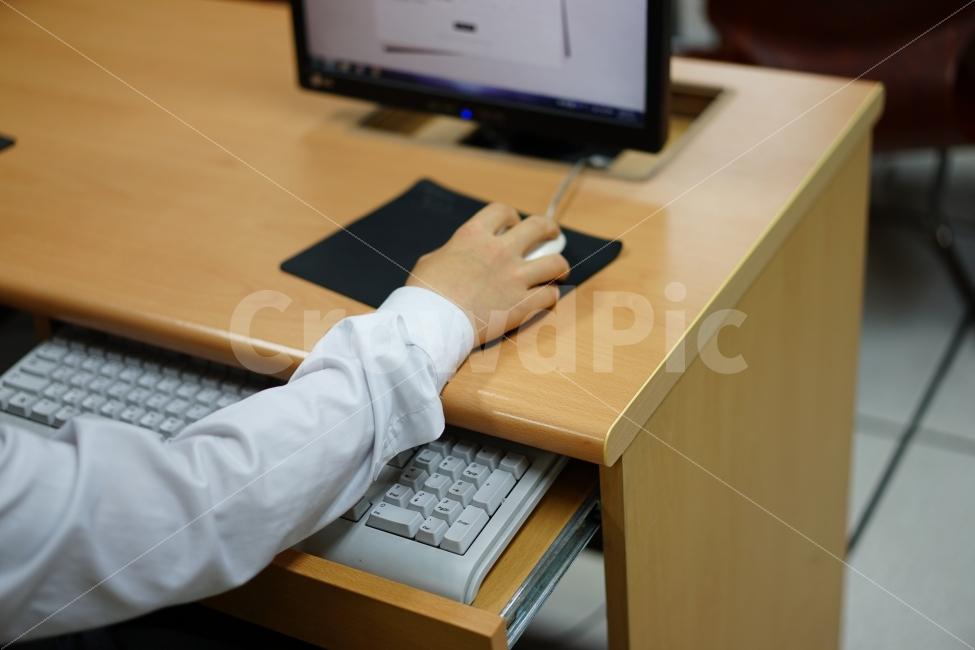 컴퓨터, 작업, 학생, 사람, 인물