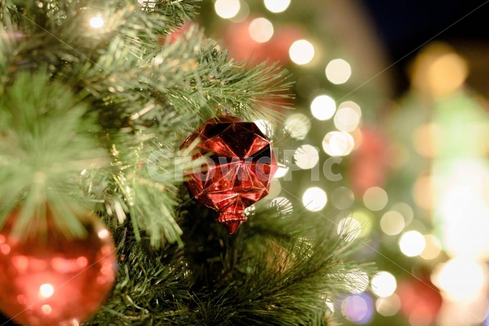 크리스마스, 겨울, 풍경, 조명, 전구