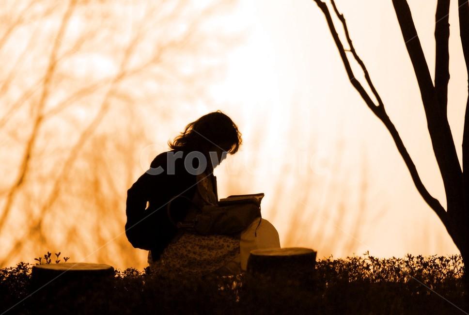 가을, 책, 독서, 책읽기, 여자