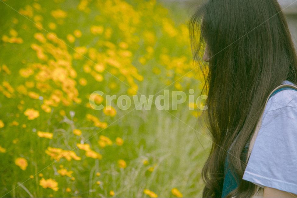 감성사진, 사람, 인물, 봄, 필름