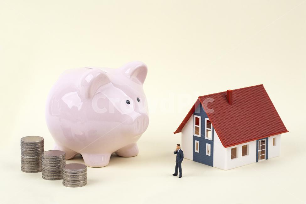 금융, 비즈니스, 돼지저금통, 동전, 집
