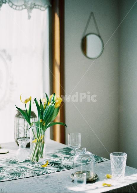 감성사진, 필름사진, 꽃, 테이블, 탁자