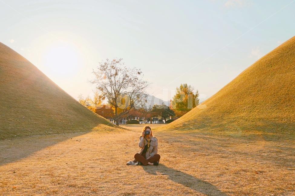 잔디, 카메라, 하늘, 가을, 작가