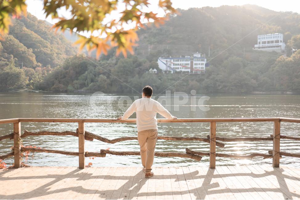 뒷모습, 남이섬, 가을, 감성, 단풍