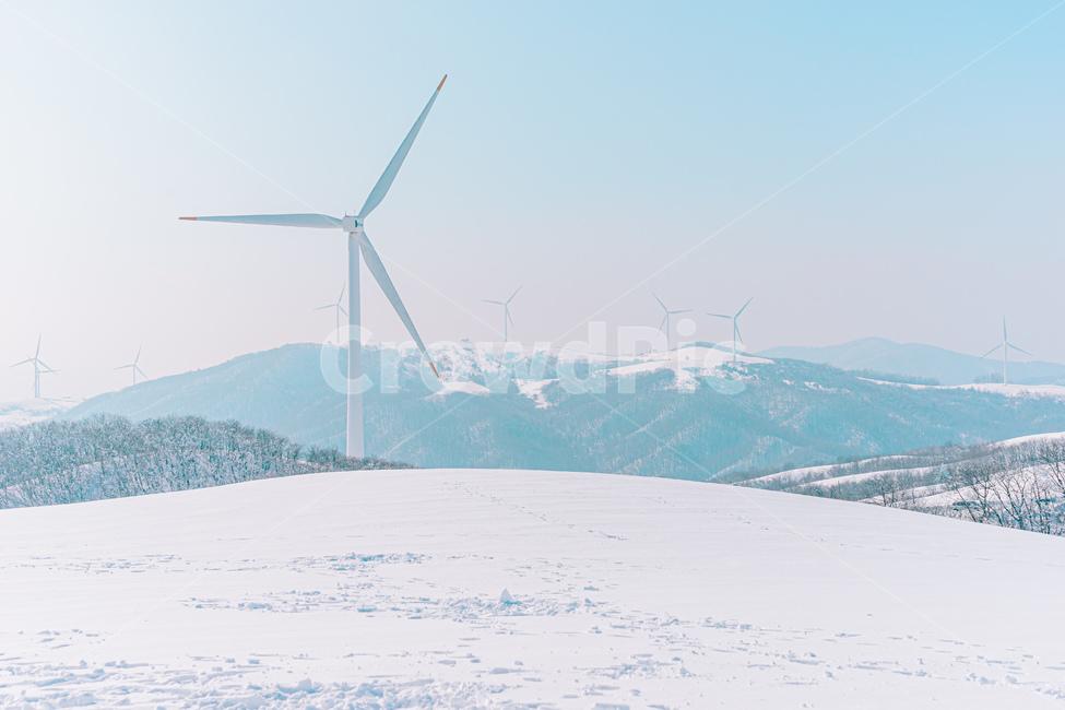 풍력발전, 눈밭, 목장, 겨울목장, 눈