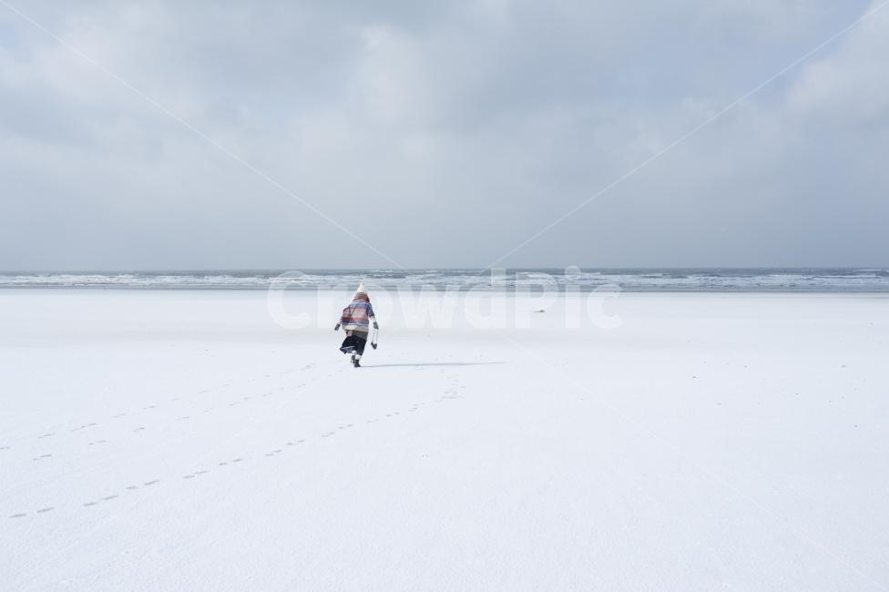 겨울, 바다, 해변, 눈, 고독