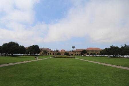 잔디-하늘-수평-스탠포드-대칭
