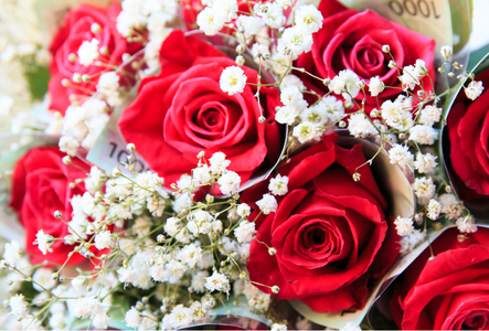 장미-장미꽃-꽃다발-돈다발-선물