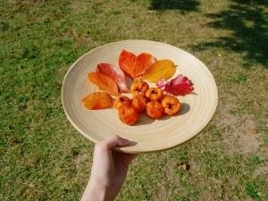 가을-추수-수확-과일-힐링