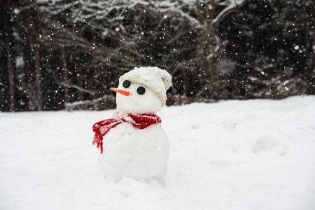 nature-자연-outdoors-옥외-snow