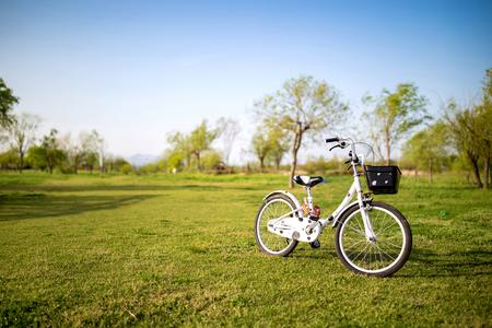 자전거-바퀴-공원-주차-휴일