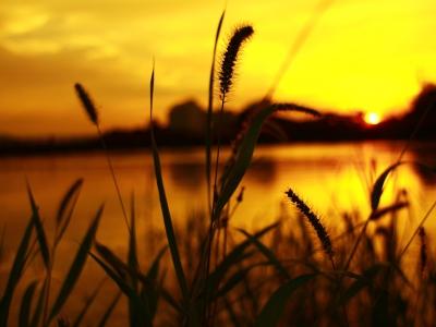 노을-해질녘-자연-공원-호수