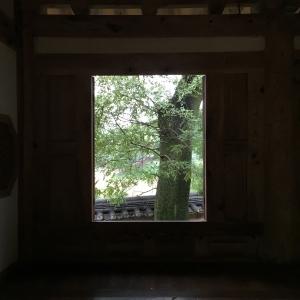 빛과어둠-자연액자-나무-나무그림-기와집