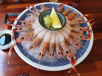 음식-식재료-새우-회-접시