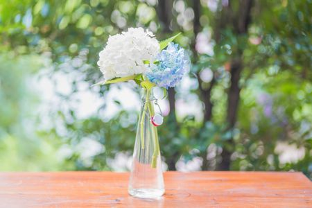 plant-식물-flowerbouquet-꽃부케-flowerarrangement