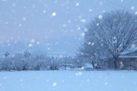 눈-봄-춘삼월-파랑색-시골