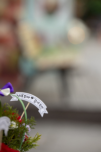 어버이날-스승의날-글귀-꽃-사랑합니다