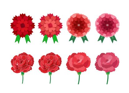carnation-카네이션-어버이날-parentsday-스승의날
