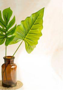나뭇잎-네이처-가지-신선-근접