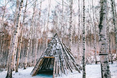 설경-눈풍경-자작나무숲-인제-자작나무