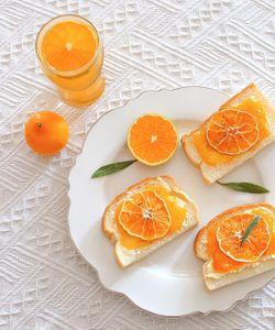 감귤류과일-주황색-음식-citrusfruit-food