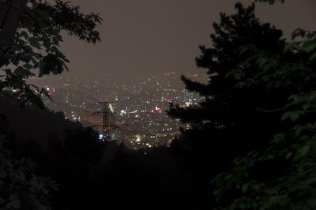 야경-도시-숲-자정-빛